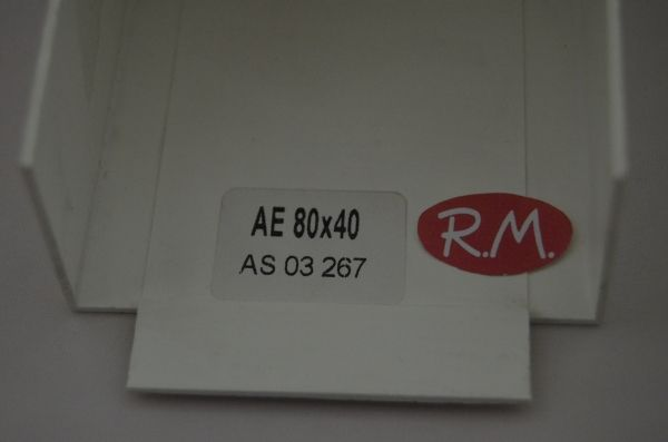 80x60mm Ángulo exterior canaleta blanca con tapa Escconduct